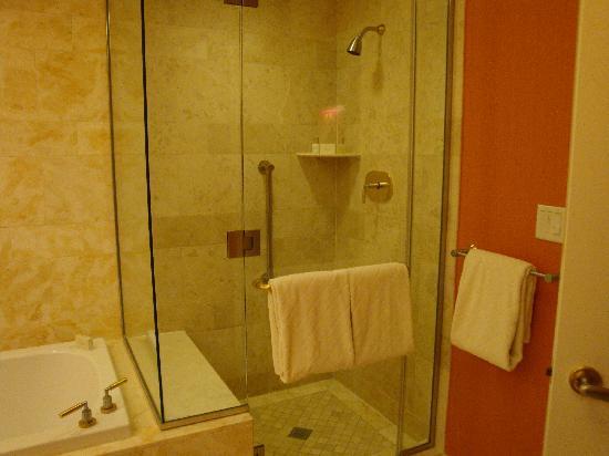 Wynn Las Vegas: Shower