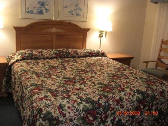 San Simeon Lodge: la habitación