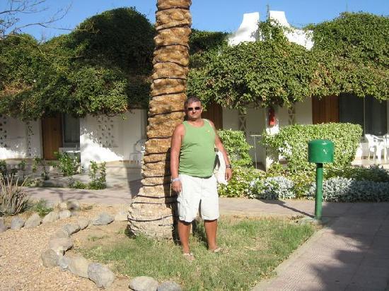 Shams Safaga: Espace vert