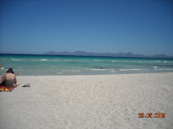 Iberostar Alcudia Park: The beach