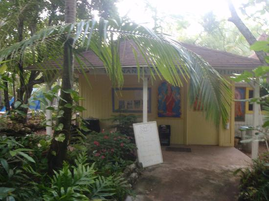 Sivananda Ashram Yoga Retreat: Ashram Tuck Shop