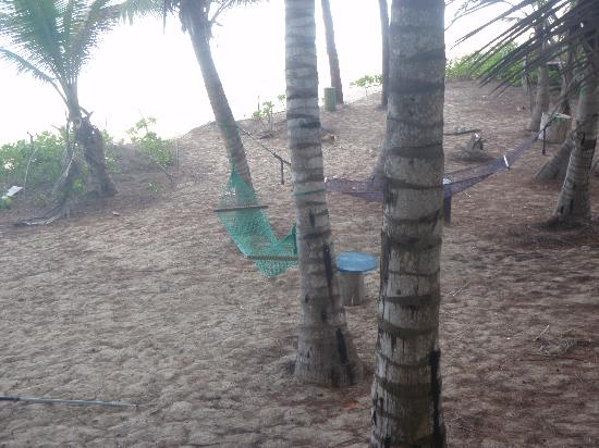 Sivananda Ashram Yoga Retreat: Hammocks @ The Beach