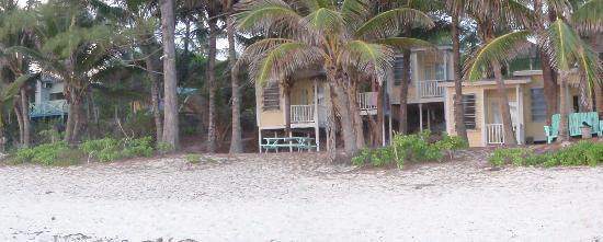 Sivananda Ashram Yoga Retreat : View from the beach