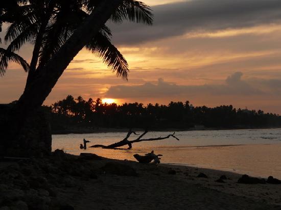 Playa Esmeralda Beach Resort: Sunrise