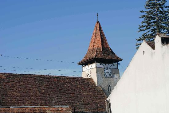 Secret Transylvania Guest House: casa verde