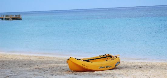 Bananarama Beach and Dive Resort: kayak = free