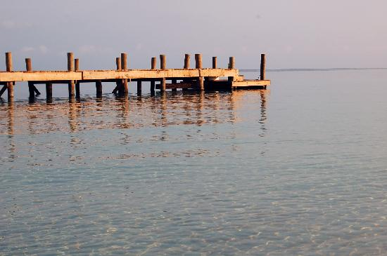 Bananarama Beach and Dive Resort: calm waters under the pier