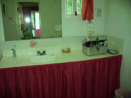 Island Inn Hotel: Waschbecken aus Plastik mit Ablage.Keine Föhnmöglichkeit