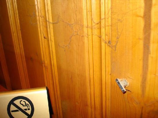 Best Western University Inn: Schmutz an der Holzvertäfelung