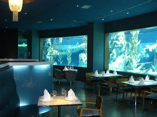 Mardan Palace: Aquarium restaurant