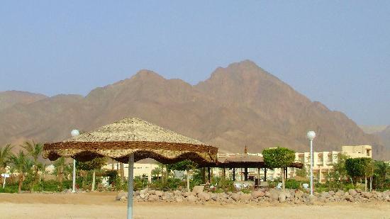 Holiday Resort Taba : Beach