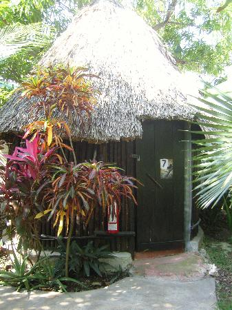 Rancho Tranquilo: magnifique jardon tropicale