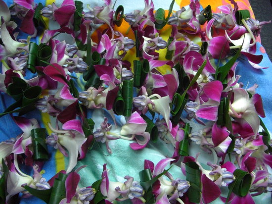 Senator Fong's Plantation and Gardens: Beautiful Leis!