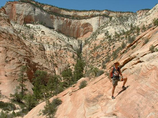 """Zion's Main Canyon: Hiking up  the """"Center of the Universe"""" trail"""