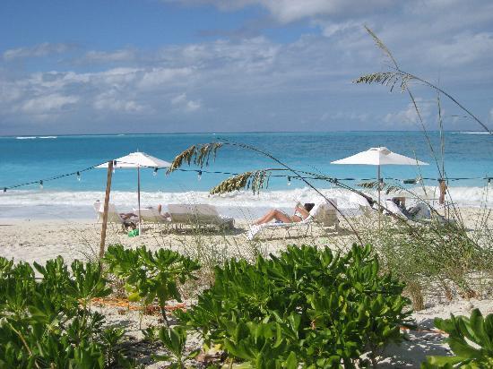 Grace Bay Club: View of beach