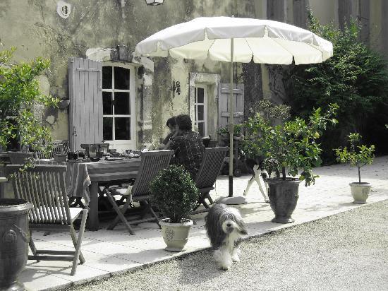 Chateau des Barrenques : petit déjeuner sur la terrasse