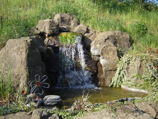 Chehalem Ridge Bed and Breakfast: Waterfall behind the B&B