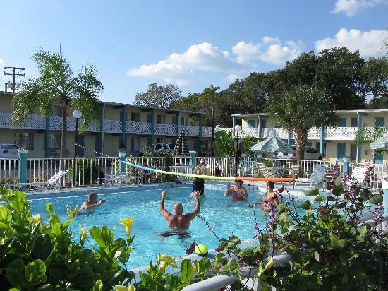 Floridian Inn: Playing volleybal at the pool