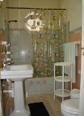 Casa Madeleine : bathroom, generous shower with hot water, ignore the whistling - it's the parrot next door!!
