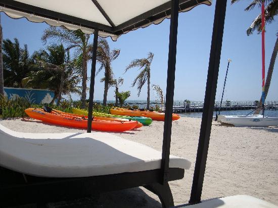 Las Terrazas Resort: Beach
