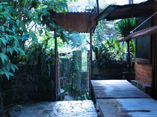 Rupa Wasi  Lodge: looking out from the hotel to the gate and the outside world. ohhh, and more stairs.
