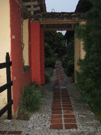 Decameron Panaca: great garden designs