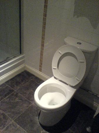 Junction Hotel: Toilet