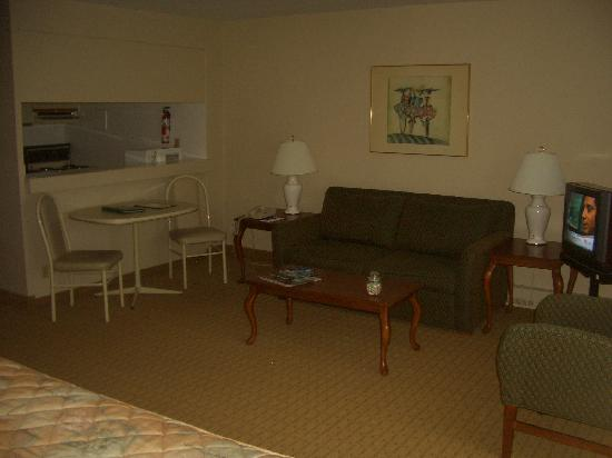 Embassy Hotel and Suites: Living Room