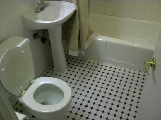 Econo Lodge: The bathroom small toilet but good space and a hair dryer too.
