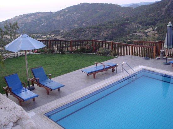 ديمتريو باراديسوس هيلز: Pool!