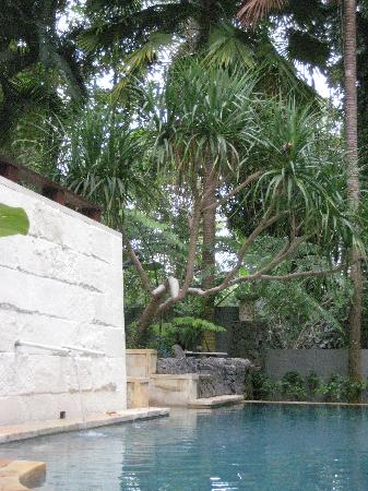 Oallas Villa Photo