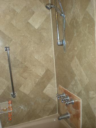 Hotel Jen Manila : Bathroom 02  Shower head loose.