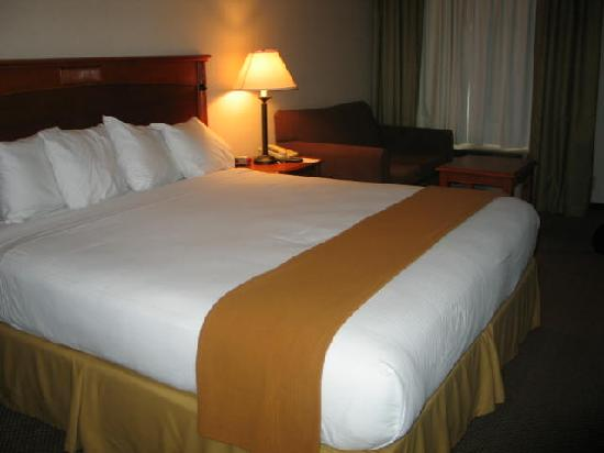 Best Western Plus Twin View Inn & Suites : bed in room