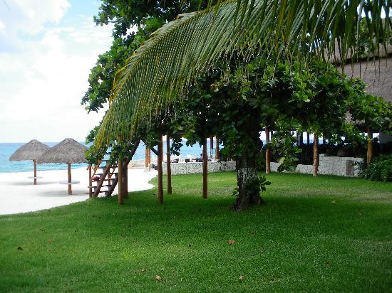 Presidente Inter-Continental Cozumel Resort & Spa: The Caribeno