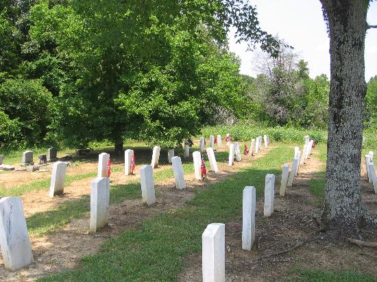 Brice's Crossroads National Battlefield: Confederate cemetery near NPS site.