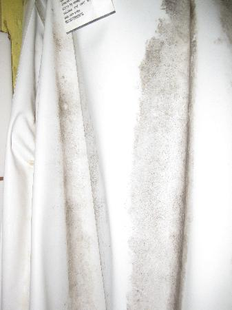 Christopher Creek Lodge: mildew/mold on length of shower curtain