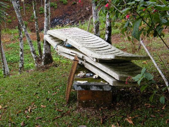 "Hostal Casa de Campo Country Inn & Spa: Junked deck chairs in ""garden"" area"