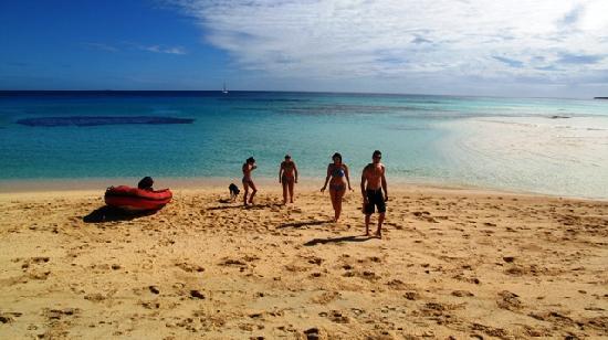 Matafonua Lodge : sandy beach