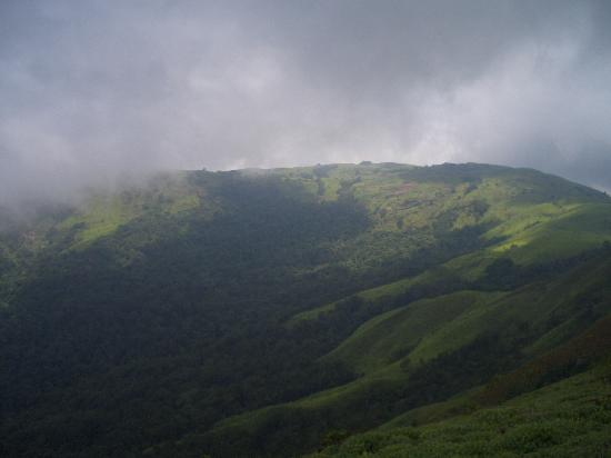 Mudigere, India: green hills with mist