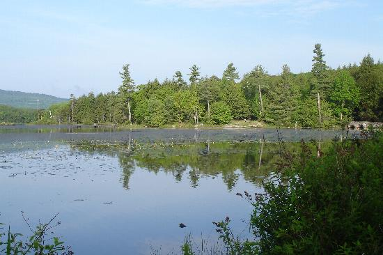 North-South Lake Campground: View from site 146