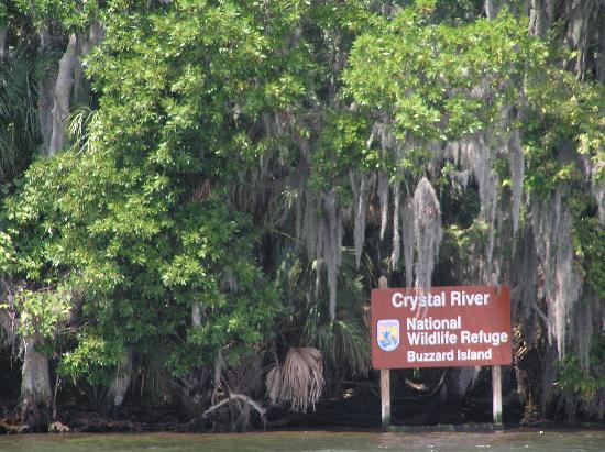 Days Inn Crystal River : Crystal River