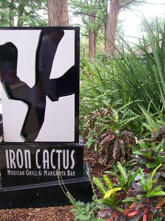 Iron Cactus Mexican Grill & Margarita Bar : Outside