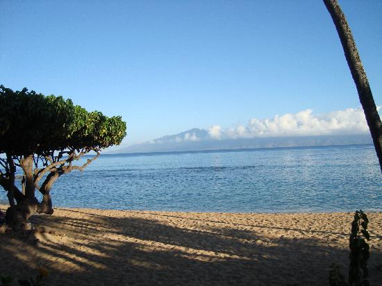 The Napili Bay : the beach, view from the room