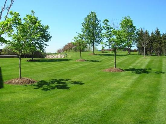 DoubleTree by Hilton Hotel Milwaukee - Brookfield: gorgeous day