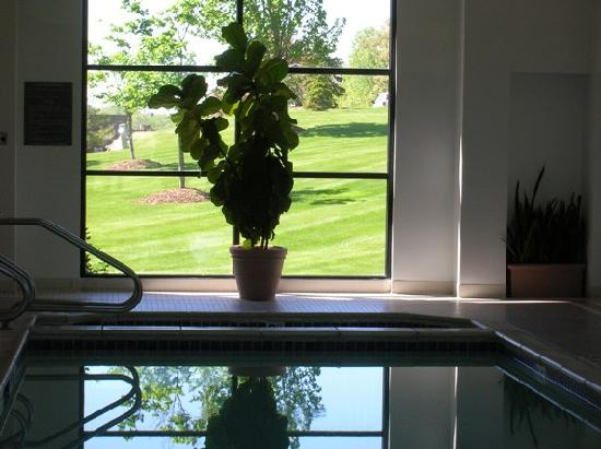 DoubleTree by Hilton Hotel Milwaukee - Brookfield : pool with a view