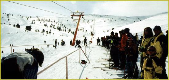 Erzincan, Turki: şahbaz