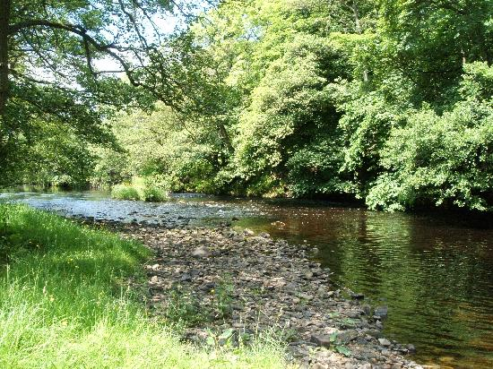 Bewerley Hall Farm: up river towards Pateley Bridge