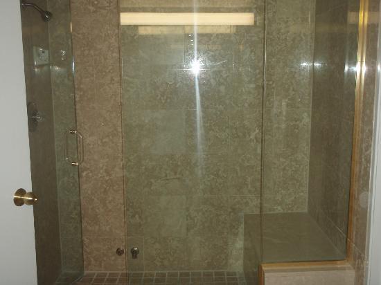 Monte Carlo Resort & Casino: The shower/steam shower in the suite.