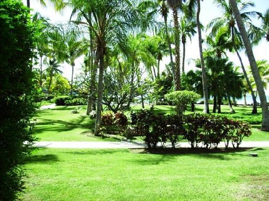 Copamarina Beach Resort & Spa: grounds