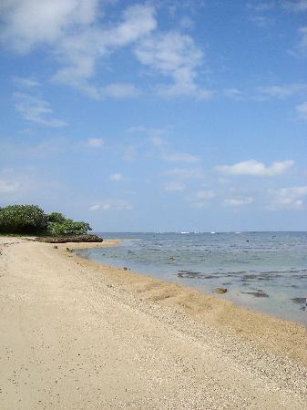 Bedarra Beach Inn: Beach infront of hotel